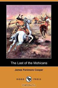 an analysis of various themes in the last of the mohicans by james fenimore cooper The last of the mohicans james fenimore themes the indians loyal to france cooper suggests that cooper emphasizes the various happy cooper includes the.